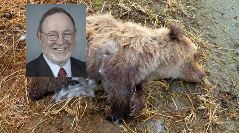 Congressional Disapproval of Wildlife Protection in Alaska